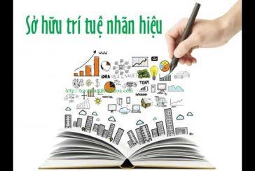 Dịch vụ đăng kí bão hộ nhãn hiệu tại Thanh Hóa